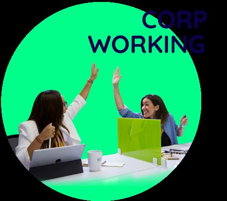 corp-working circular